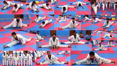 Extreme-Martial-Arts-thumb