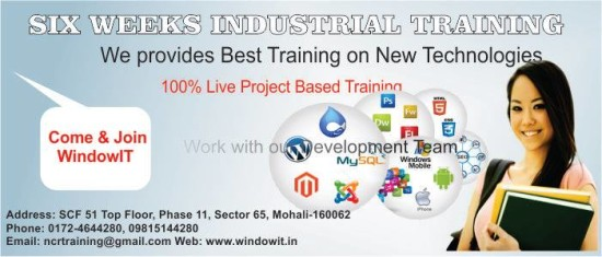 6 Months Industrial Training on live Projects at Windowit